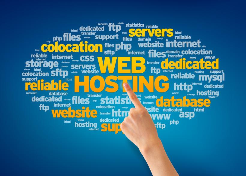 WHS - Web Hosting Company