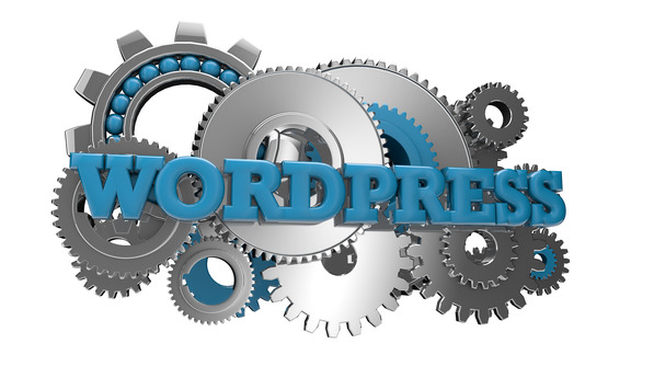 Wordpress Hosting Explained