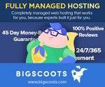 BigScoots Hosting Promo