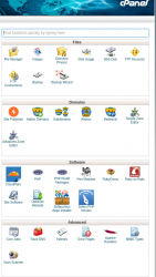 BigScoots CPanel